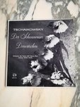 Tschaikowsky / Orchester Des Teatro Dell Opera