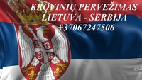 Teikiame tarptautinio perkraustymo paslauga LT -SRB – LT