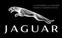 Jaguar dalys, autodalys, Jaguar dalimis  Jaguar dalys, autodalys