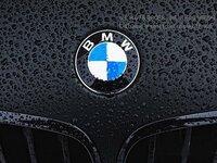 BMW X6 F16 dalimis