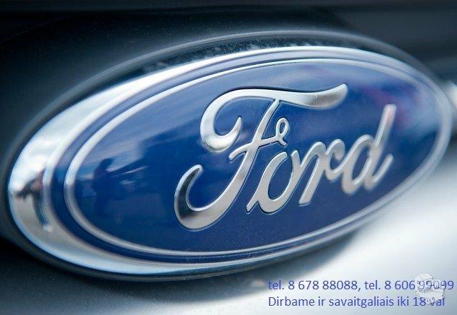 Ford Escape dalimis