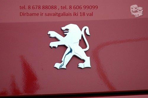 Peugeot 106 dalimis