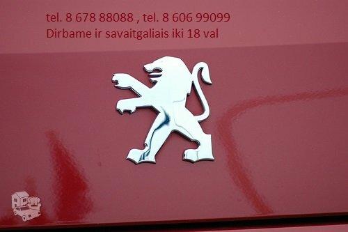 Peugeot 807 dalimis