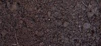 Kompostine zeme siltnamiui