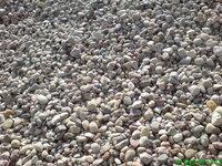 Zvirgzdas, akmenukai fr 4-16, 16-60