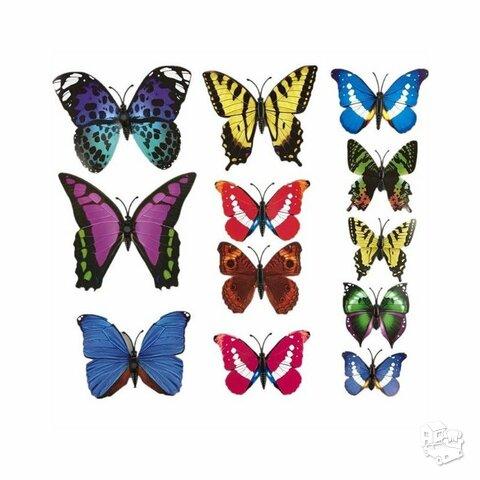 3D Sienos lipdukai-drugeliai, 12vnt.