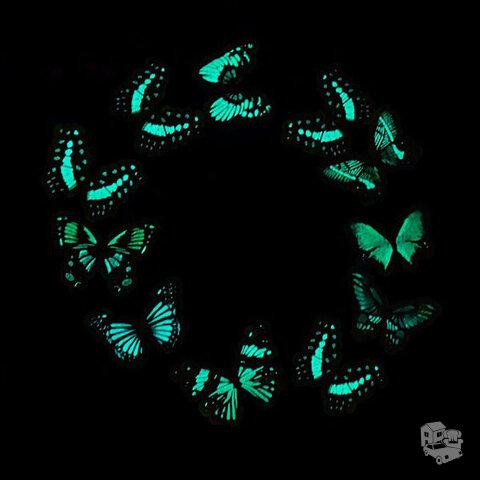 3D sienos lipdukai drugeliai šviečiantys tamsoje, 6 vnt.