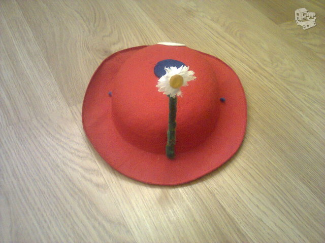 Skrybėlaitė karnavalui