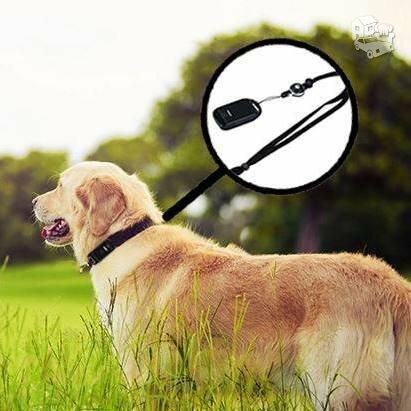 GPS seklys Šunims Katėms ir kitiems gyvūnams