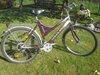 Conquest Performance dviratis.