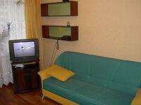 1 kambario butas Vilniuje, Šnipiškėse, Rinktinės g.